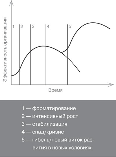 Рис. 1. Основные этапы развития организации.